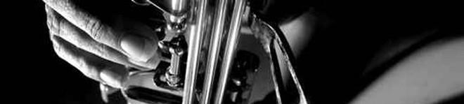 musikerleistungsabzeichen